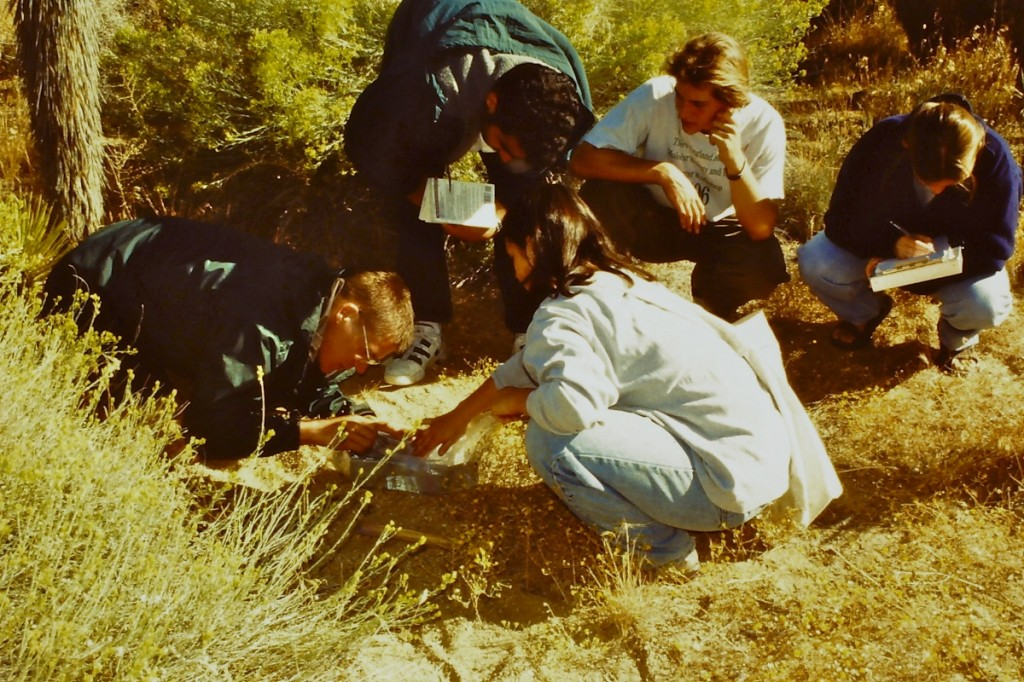 Students catching small mammals during trip to Upper Mojave Desert