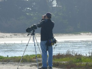 Alan at Elkhorn Slough, looking for birds